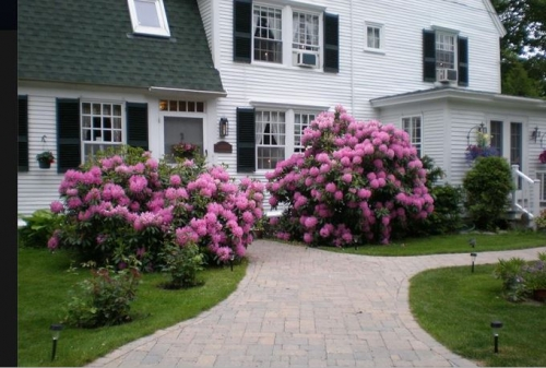 Maine bed and breakfast inn for sale - Waldo Emerson Inn bed and Breakfast